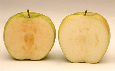 u fruit in kelowna okanagan company genetically modified apple sold to