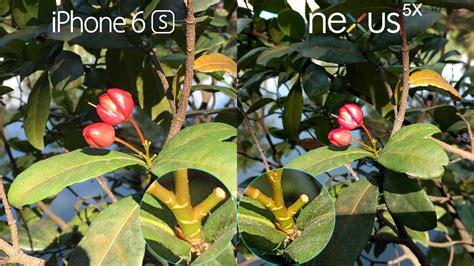 iphone   nexus  camera review comparison