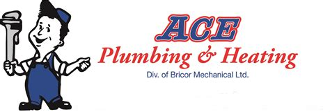Ace Plumbing Carrier Products