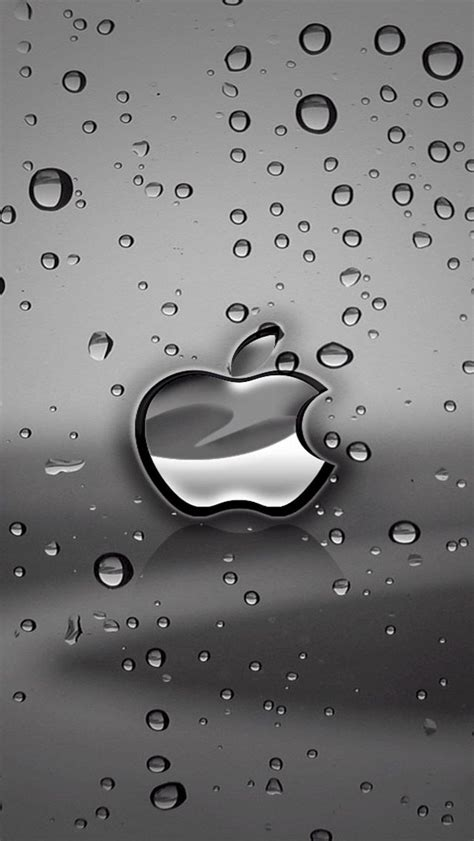 apple logo iphone  hd wallpapers watery