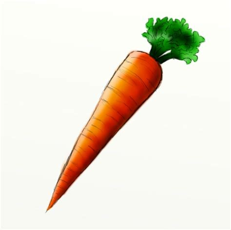 carrot clip best 100 free carrot clipart images 2018