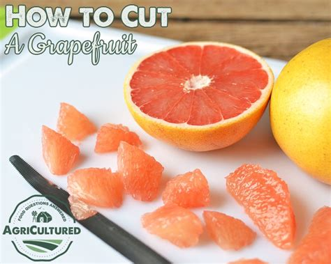 how to cut a grapefruit my fearless kitchen
