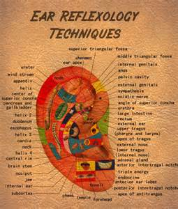 emotional ear reflexology map images frompo