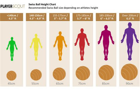 what size exercise ball for stability ball sizes player scout