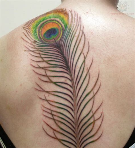 peacock feather tattoo designs gallery peacock feather tattoos on back