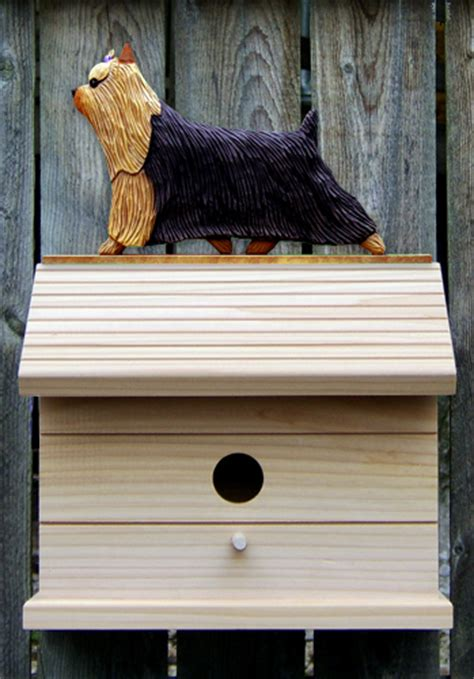 house a yorkie puppy terrier bird house