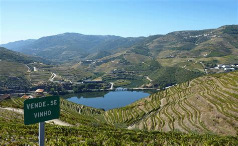 boat trip up the douro river back to the bootstrap