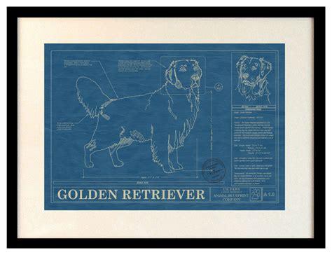 golden retriever blueprint shop houzz animal blueprint company animal blueprint artwork