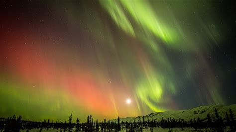 Alaska Northern Lights by Northern Lights Alaska Like Never Before A Must See