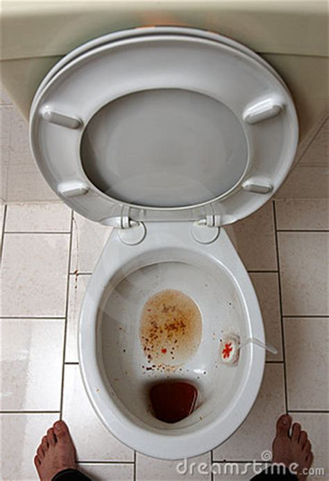 dirty bathroom dream dirty toilet stock images image 13238504