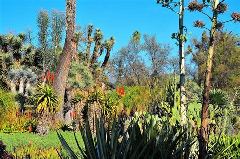 Botanical Gardens San Marino 15 Best Ideas About Favorite Places Spaces On Hanging Utah And Bavaria