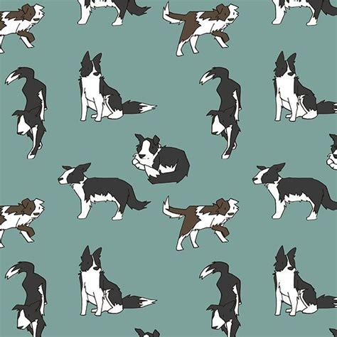 dog pattern vans 443 best leuke plaatjes van border collies images on