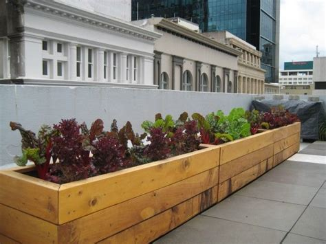 How To Make A Planter Box For Vegetables by How To Build Planter Boxes I Wanna Try This