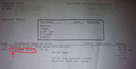 teacup puppy store ripoff report teacup puppies store complaint review fort lauderdale florida