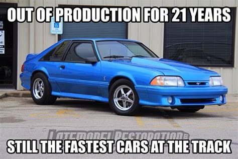 Fox Body Meme - fox body mustang fox stangs pinterest