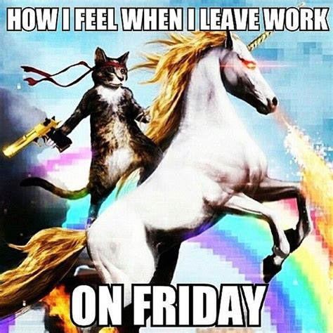 Finally Friday Meme - 1000 images about yeah i like that on pinterest