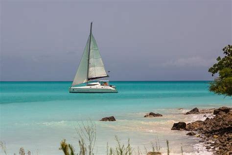 catamaran traduccion en ingles catch the cat private sailing charters jolly harbour