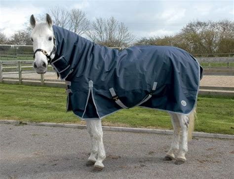 turnout rugs cheap affordable rhinegold winter turnout rug fast tack direct