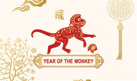 new year facts about the monkey ten things you never knew about monkeys top 10 facts