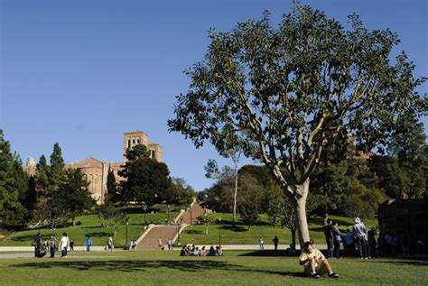 Ucla Mba Electives by Entertainment Program Ucla Developersalways