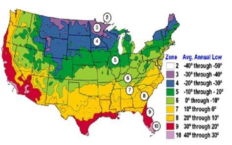 planting zone map usa aloe vera plant aloe vera hq