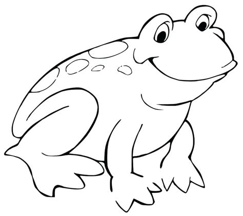 coqui frog coloring page coqui coloring page red eyed tree frog colouring page 6