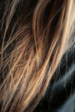 is grey hair more porous 1000 images about color on pinterest