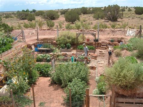 High Desert Vegetable Gardening Pictures To Pin On Desert Vegetable Gardening