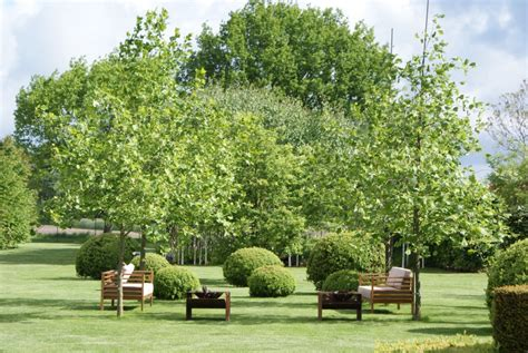 Gartengestaltung Großer Garten by Gartengestaltung Gro 223 Er Garten Fototapete 2017