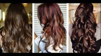 Different Types Of Hair Dye by Hair Color Ideas Types Of Hair Color With How Many Types