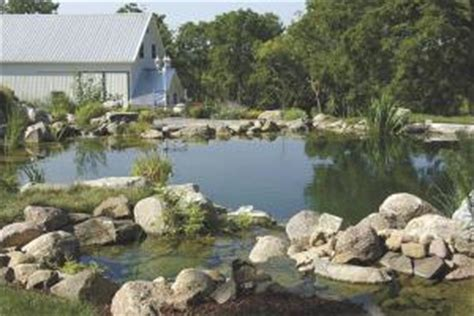 backyard swimming hole farm show how to make a backyard quot chemical free