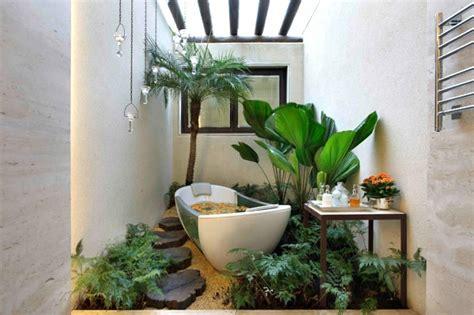 pflanzen bad pflanzen im badezimmer die besten vorschl 228 ge f 252 r sie