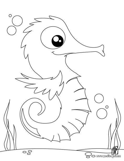 imagenes de animales marinos para imprimir dibujos para colorear un hipoco es hellokids com