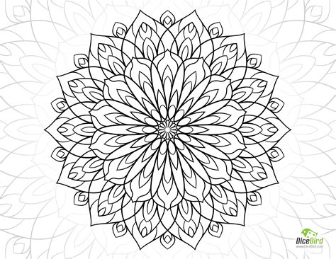 coloring book for adults flowers dahlia flower free coloring sheets