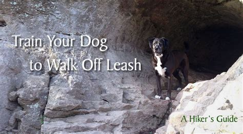 how to your to walk leash how to your to walk leash a hiker s guide