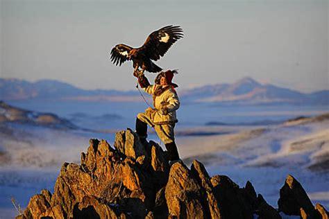 amazing stuff 187 eagle