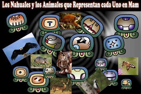 imagenes nahuales mayas los 20 nahuales mayas en mam y los animales que