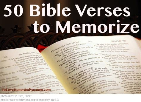 bible verse word search for 52 memory bible verse for ages 6 8 bible study for volume 6 books 50 most important bible verses to memorize my purpose