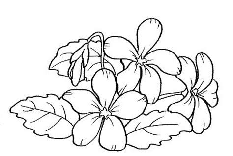 viola fiore disegno disegni da colorare fiore viola disegnicoloragratis