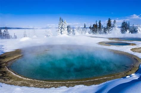 Winter Yellow 10 reasons to visit yellowstone national park in winter