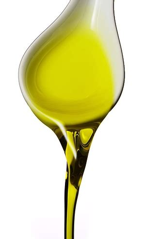 bicchieri degustazione olio agt guide turistiche della romagna seminari di