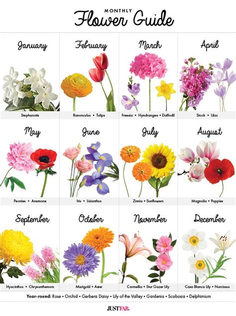 birth month flowers tattoos best 25 birth flower tattoos ideas on birth