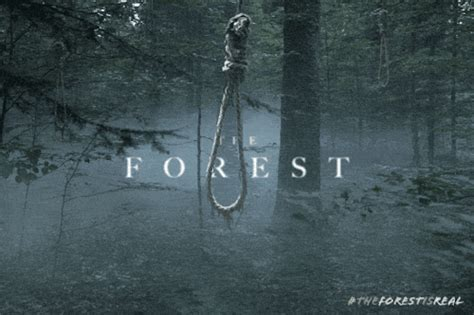 horrorfilm chinesisches the aokigahara forest