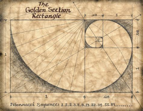 golden sections the golden section 11 x 14 art print mathematics by