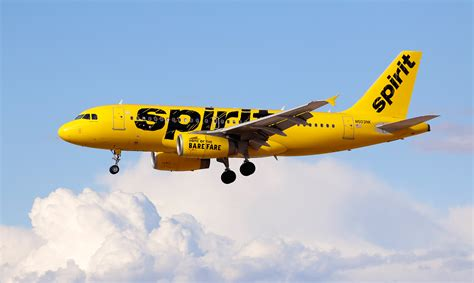 Spirit Airlines Gift Card - spirit airlines ad references miss universe santa claus money