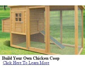 what does coop mean when buying a house buy portable chicken coop portable chicken coop
