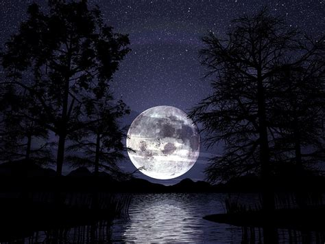 wallpaper dark moon moon dark trees lake night wallpapers moon dark trees