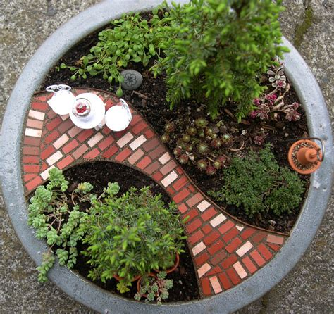 tiny garden about the mini garden guru the mini garden guru from