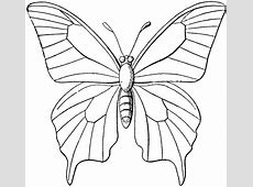 Butterfly Outline | ClipArt ETC A-paper Clip Art