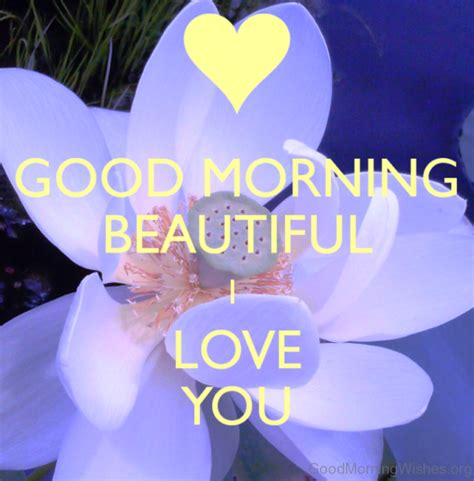 Morning And I You Pictures morning beautiful i you images impremedia net